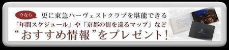 京都のオススメ情報